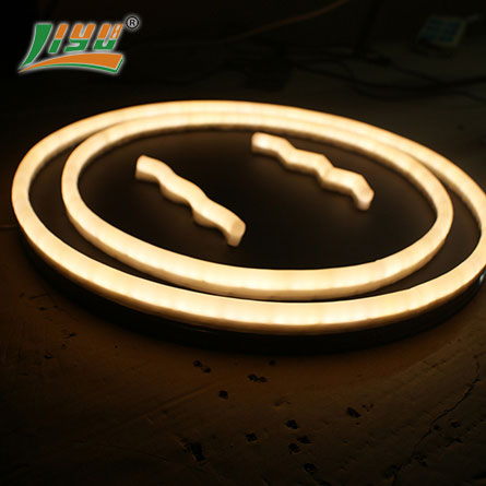 12v custom flex neon sign